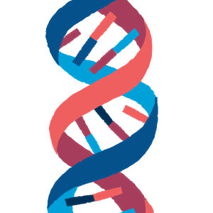 Our DNA: An Exciting Culture of Collaboration