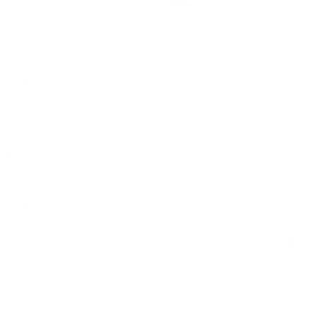 salt-of-the-earth